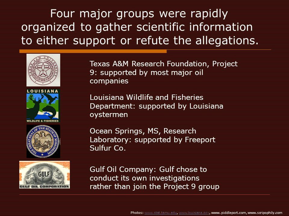 Four major groups were rapidly organized to gather scientific information to either support or refute the allegations.