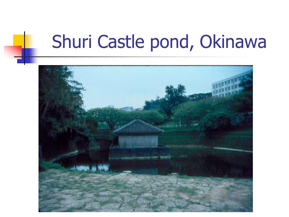 Shuri Castle pond, Okinawa