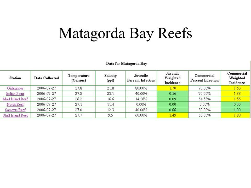 Matagorda Bay Reefs