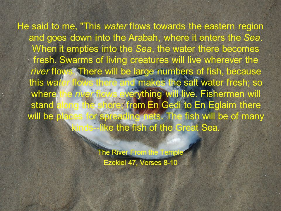 He said to me, This water flows towards the eastern region and goes down into the Arabah, where it enters the Sea.
