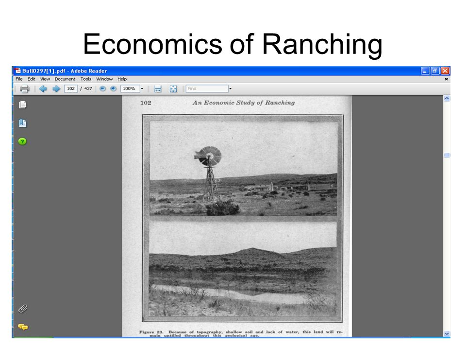 Economics of Ranching