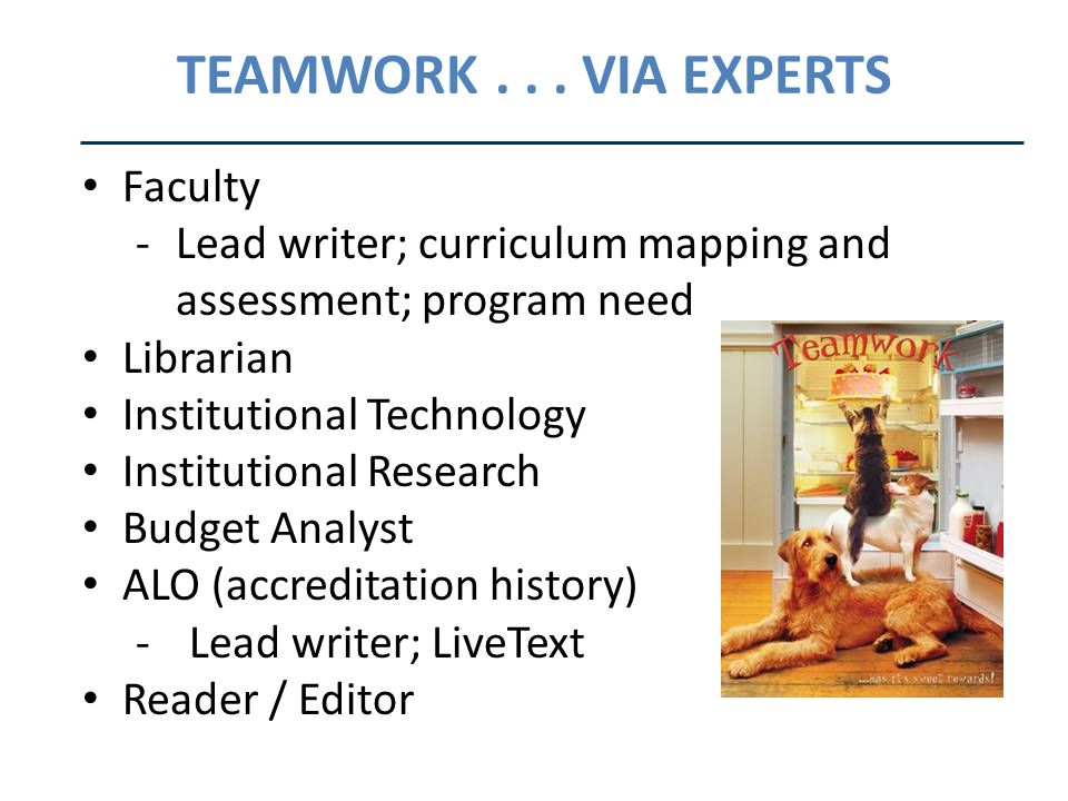 TEAMWORK... VIA EXPERTS Faculty -Lead writer; curriculum mapping and assessment; program need Librarian Institutional Technology Institutional Researc