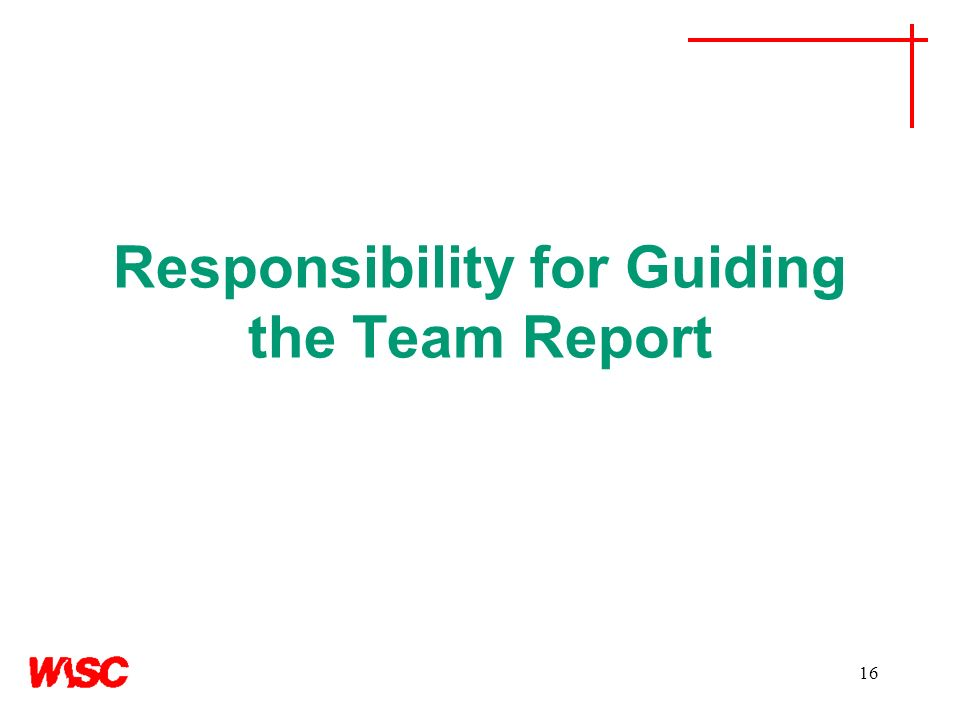 Responsibility for Guiding the Team Report 16