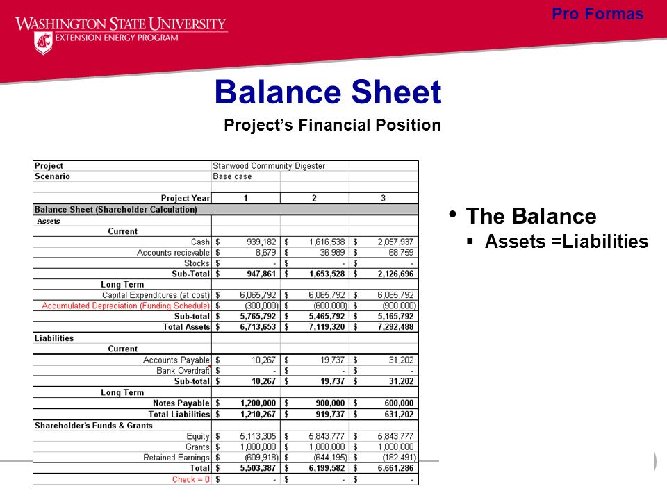 Balance Sheet Projects Financial Position The Balance Assets =Liabilities Pro Formas