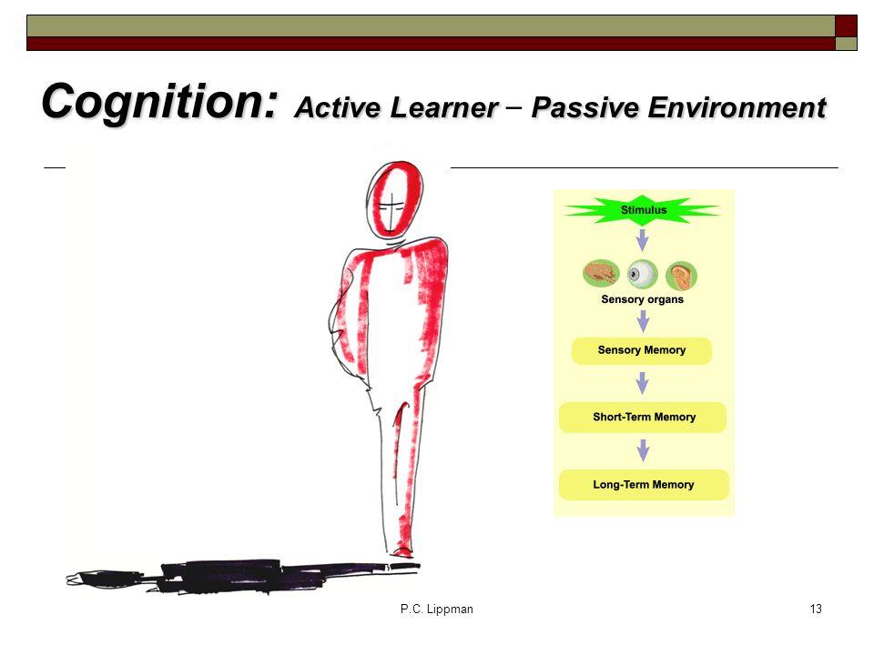 P.C. Lippman13 Cognition: Active LearnerPassive Environment Cognition: Active Learner – Passive Environment