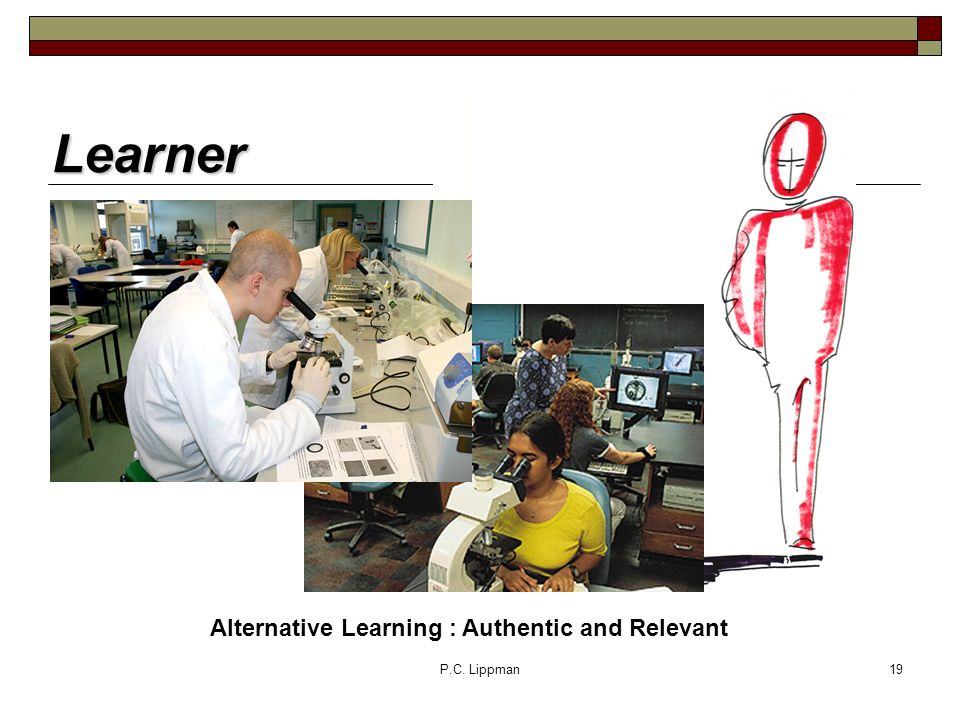 P.C. Lippman19 Learner Alternative Learning : Authentic and Relevant