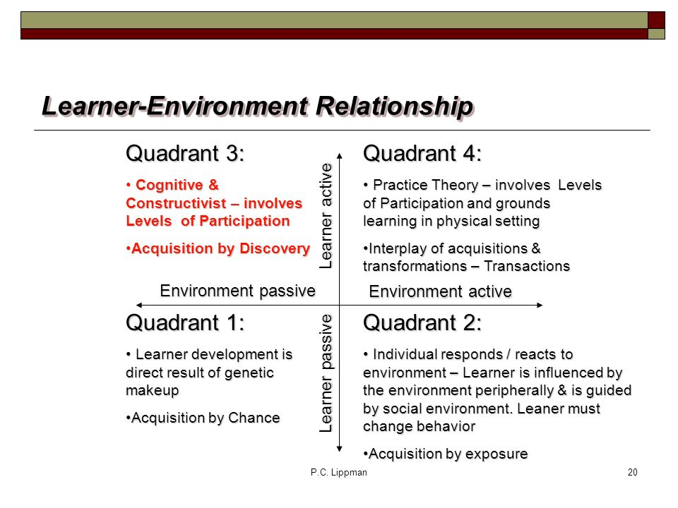 P.C. Lippman20 Learner-Environment Relationship Quadrant 4: Practice Theory – involves Levels of Participation and grounds learning in physical settin