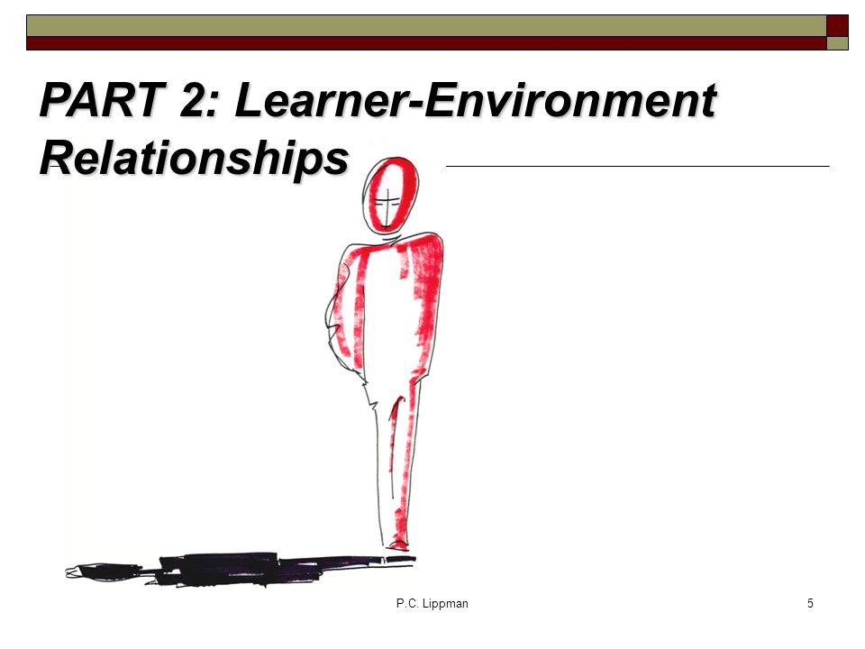 P.C. Lippman5 PART 2: Learner-Environment Relationships