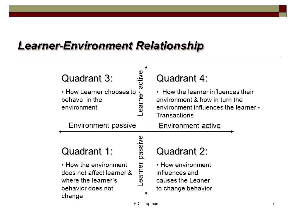 P.C. Lippman7 Learner-Environment Relationship Quadrant 4: How the learner influences their environment & how in turn the environment influences the l