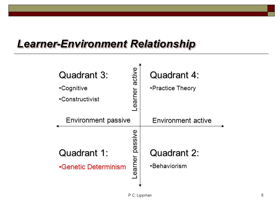 P.C. Lippman8 Learner-Environment Relationship Quadrant 4: Practice TheoryPractice Theory Quadrant 2: BehaviorismBehaviorism Quadrant 3: CognitiveCogn