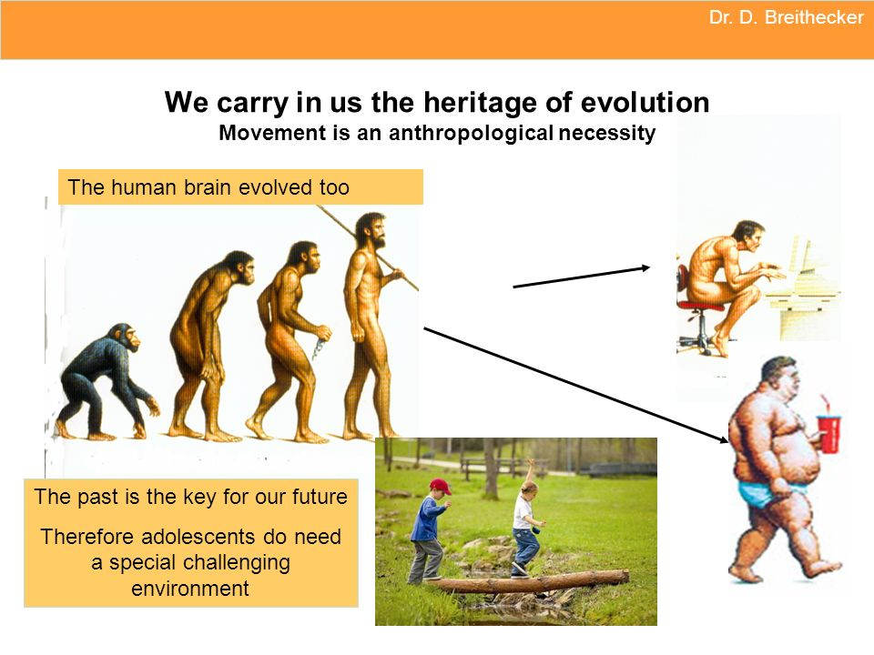 Dr. D. Breithecker We carry in us the heritage of evolution Movement is an anthropological necessity The past is the key for our future Therefore adol