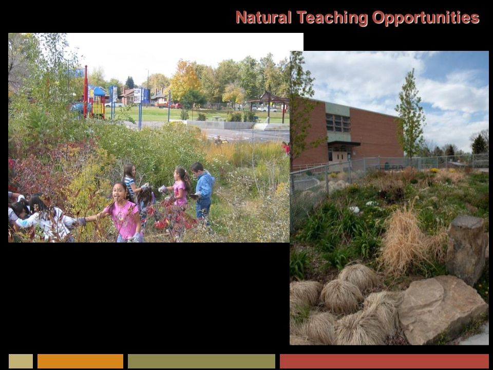 Natural Teaching Opportunities