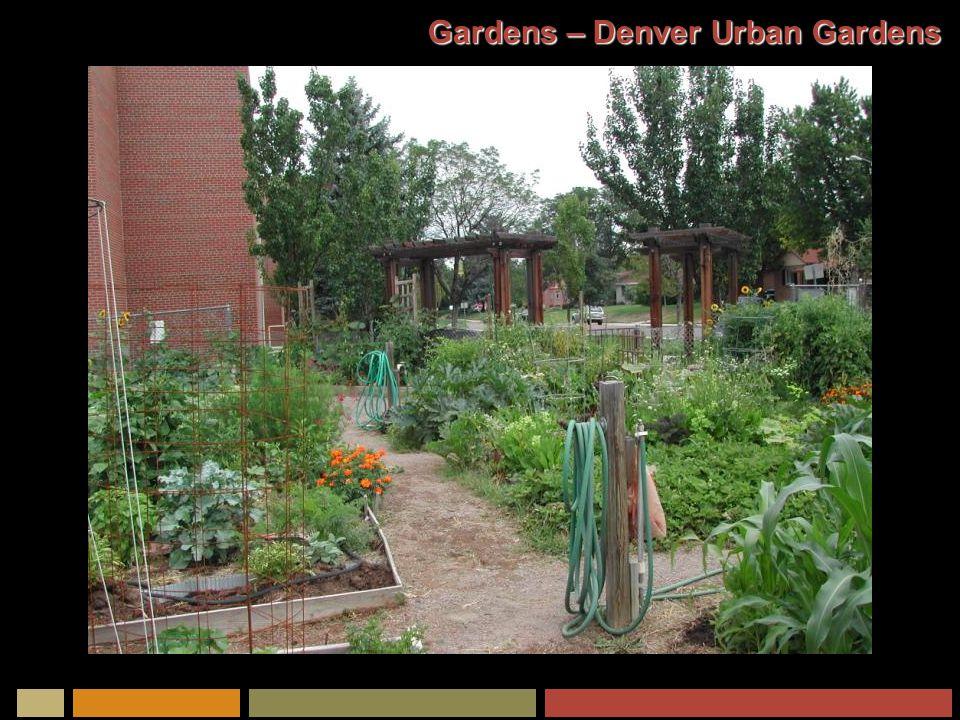 Gardens – Denver Urban Gardens