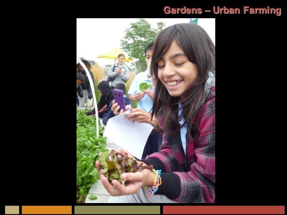 Gardens – Urban Farming