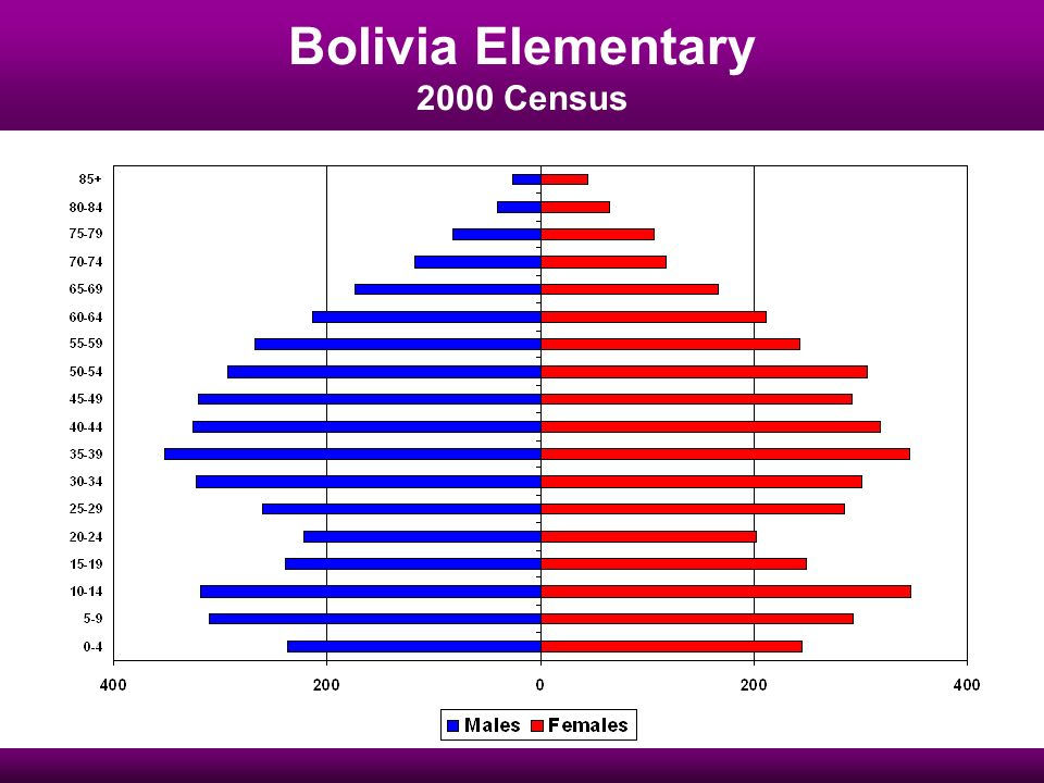 Bolivia Elementary 2000 Census
