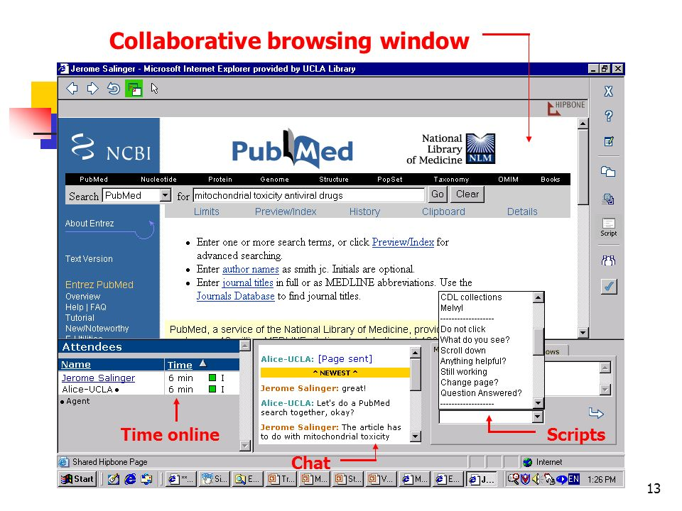 13 Time online Collaborative browsing window Scripts Chat