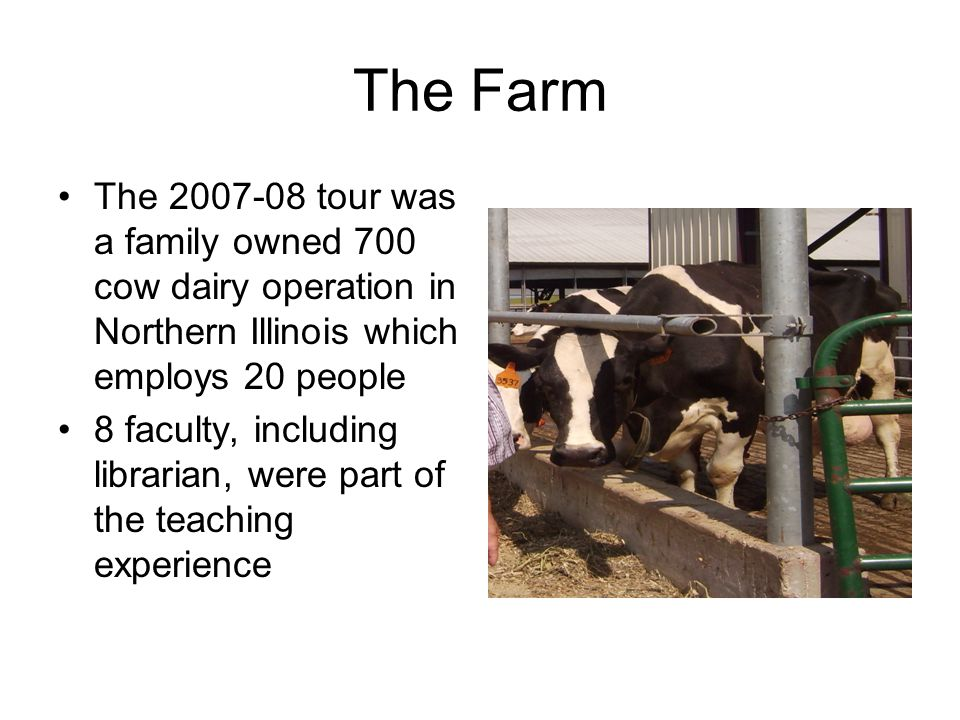 The Farm The 2007-08 tour was a family owned 700 cow dairy operation in Northern Illinois which employs 20 people 8 faculty, including librarian, were