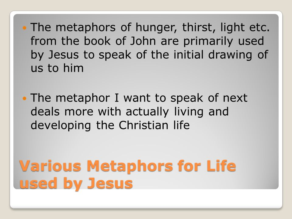 Various Metaphors for Life used by Jesus The metaphors of hunger, thirst, light etc.