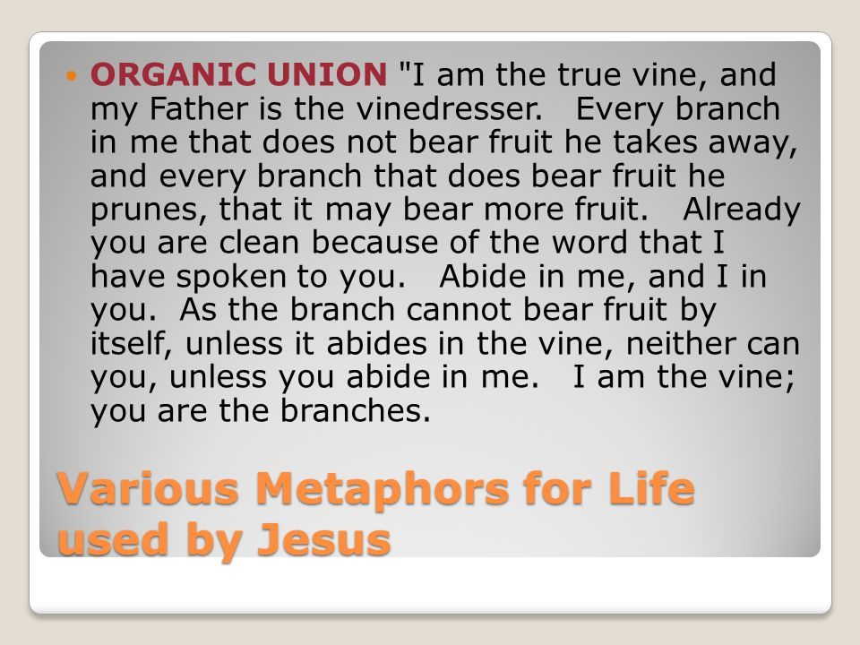Various Metaphors for Life used by Jesus ORGANIC UNION I am the true vine, and my Father is the vinedresser.