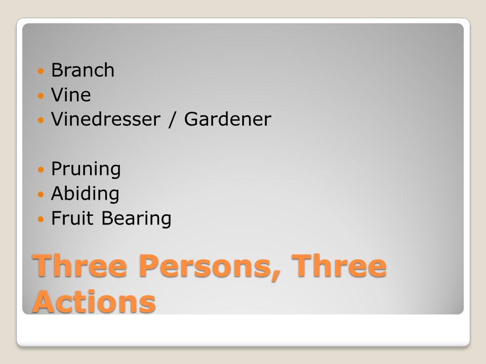 Three Persons, Three Actions Branch Vine Vinedresser / Gardener Pruning Abiding Fruit Bearing