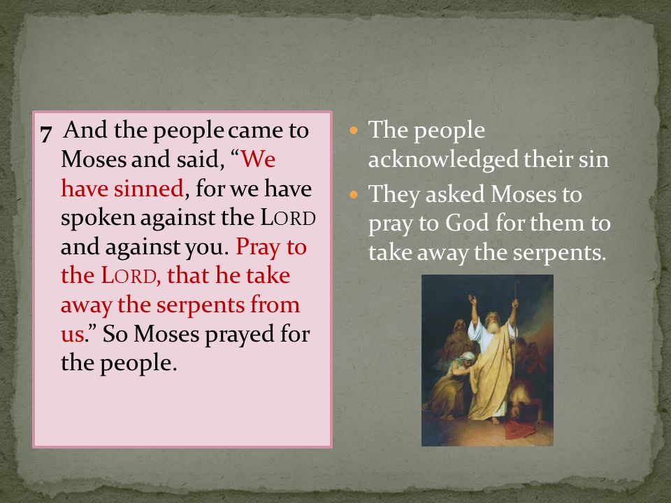 The people acknowledged their sin They asked Moses to pray to God for them to take away the serpents.
