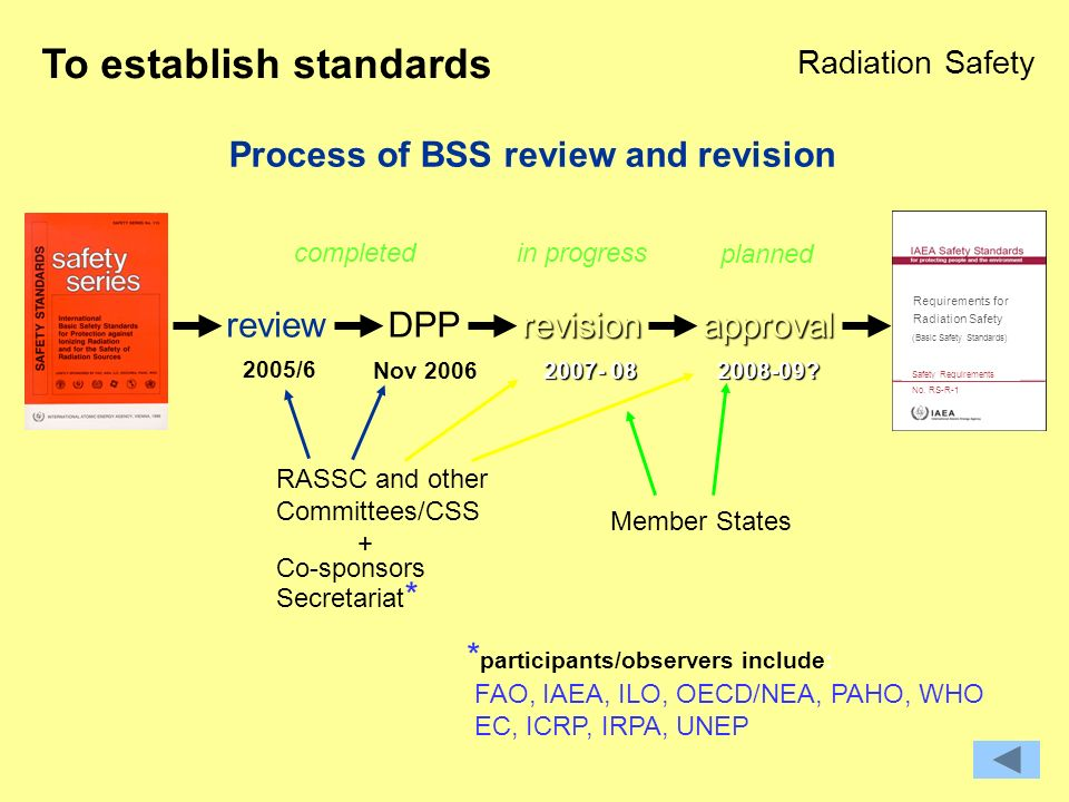 Process of BSS review and revision reviewDPPrevisionapproval Requirements for Safety Requirements No.