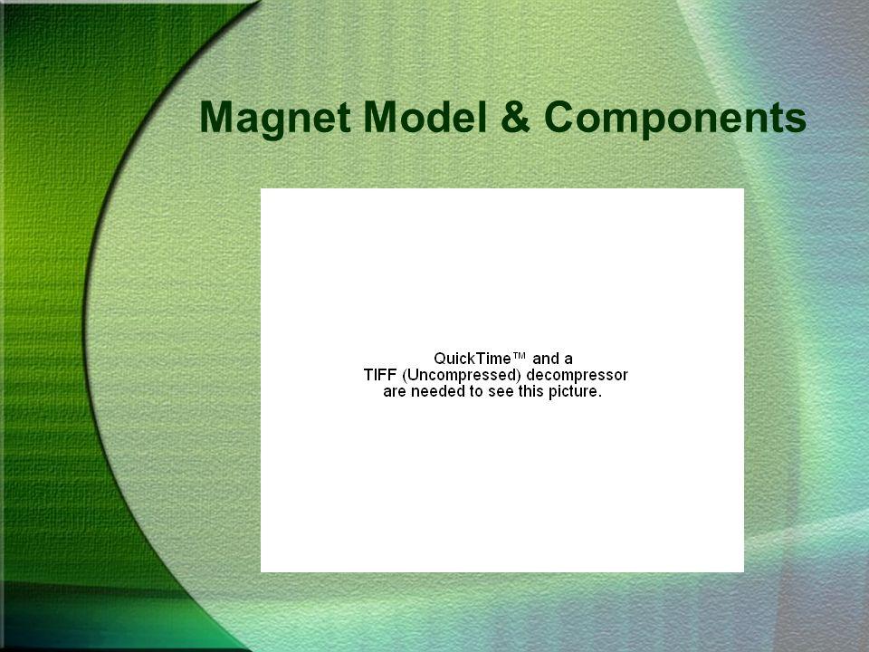 Magnet Model & Components