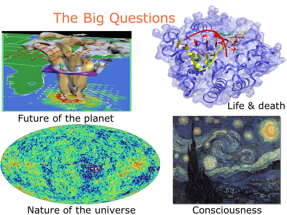 The Big Questions Nature of the universeConsciousness Life & death Future of the planet