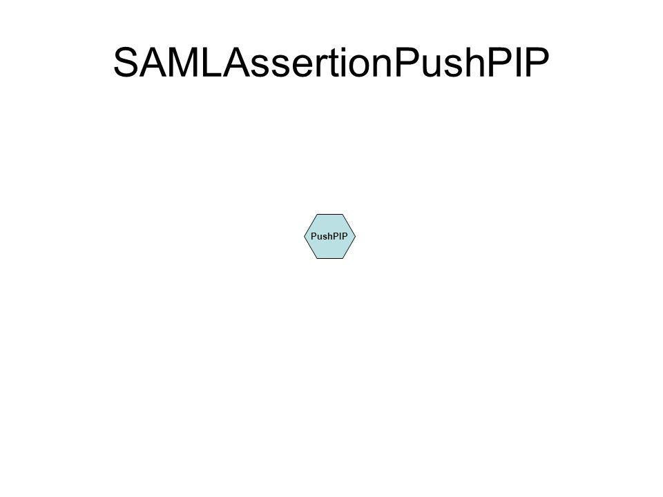 SAMLAssertionPushPIP PushPIP