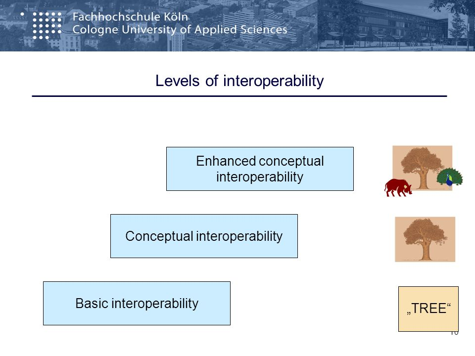 10 Levels of interoperability Basic interoperability Conceptual interoperability Enhanced conceptual interoperability TREE