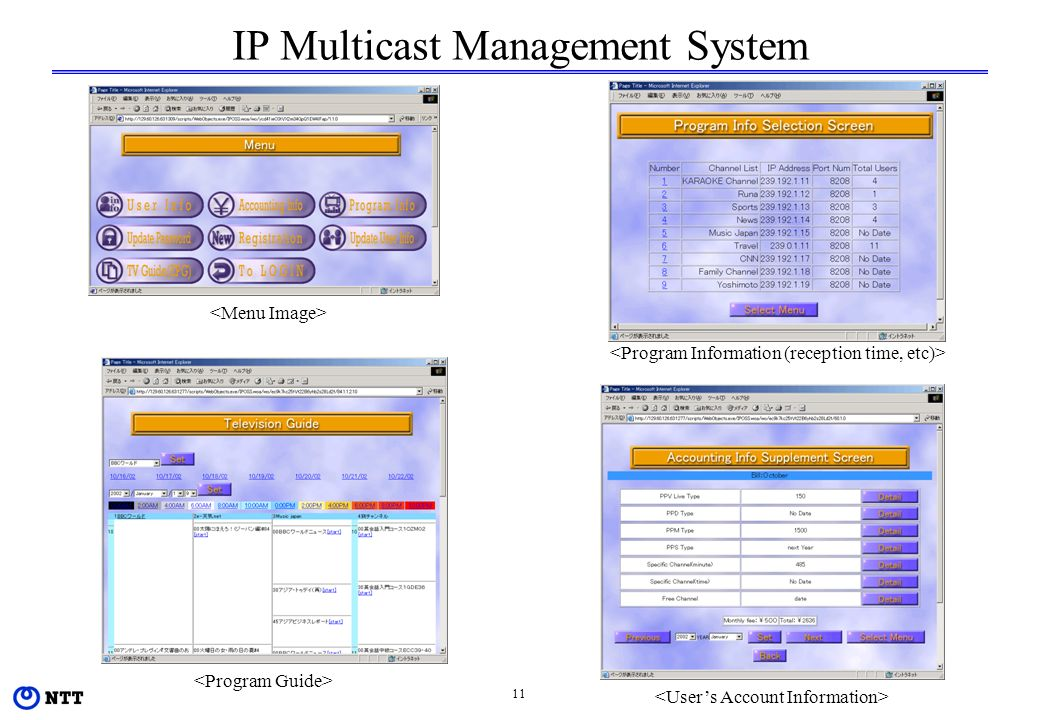 11 IP Multicast Management System