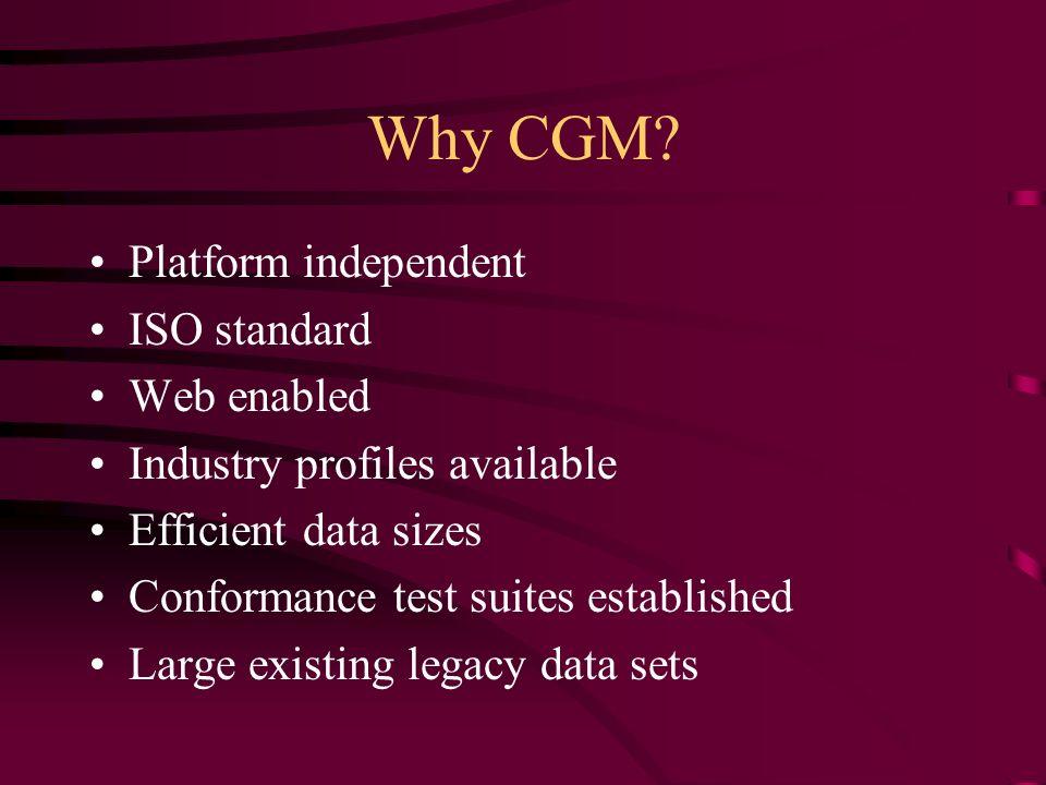 Why CGM.