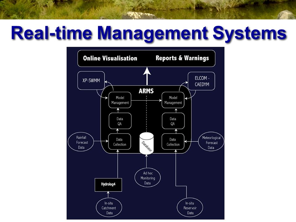 Real-time Management Systems