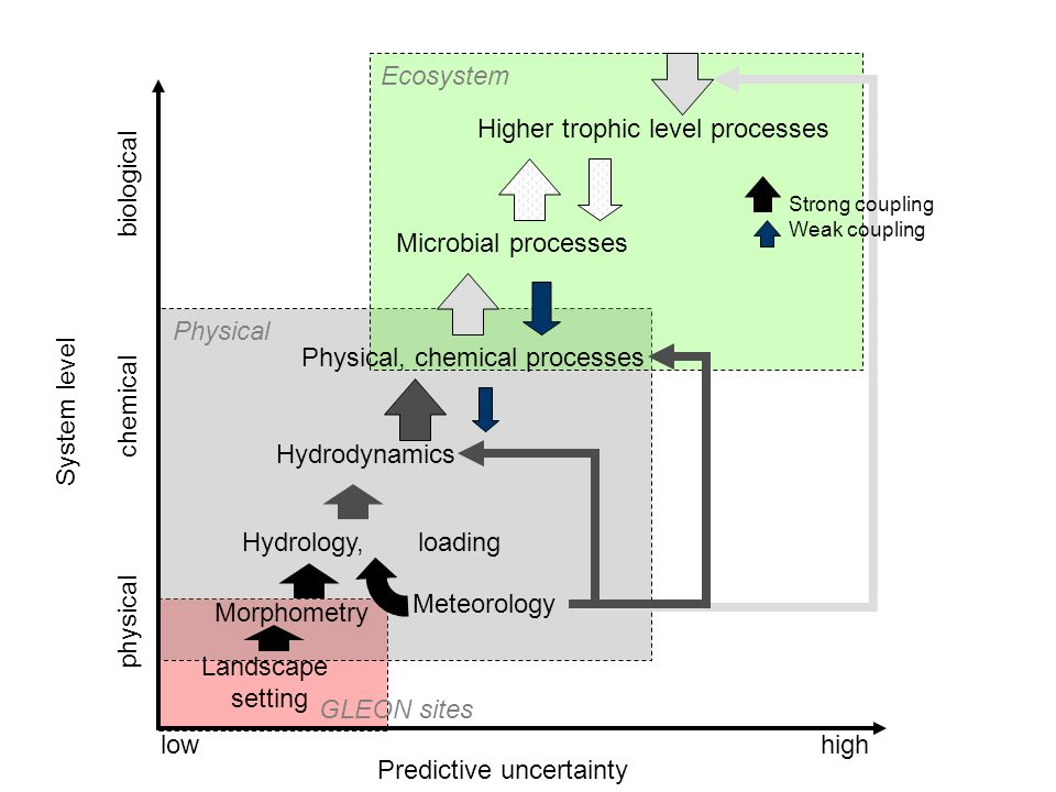 Morphometry Hydrology, loading Hydrodynamics Physical, chemical processes Landscape setting Microbial processes Higher trophic level processes Predictive uncertainty highlow Meteorology Strong coupling Weak coupling physical chemical biological System level Ecosystem Physical GLEON sites