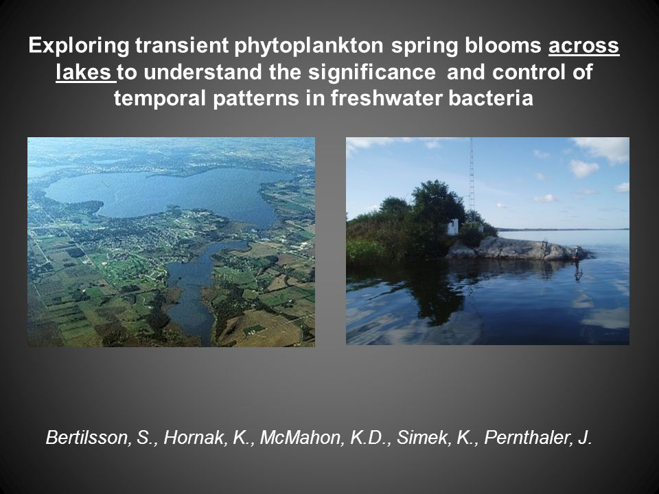 Exploring transient phytoplankton spring blooms across lakes to understand the significance and control of temporal patterns in freshwater bacteria Be