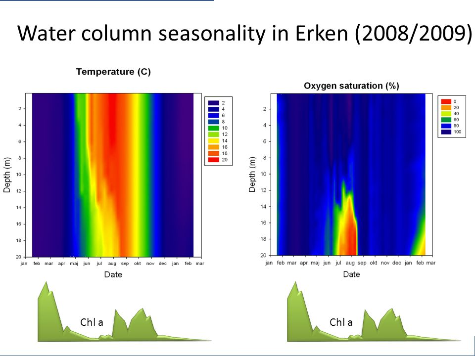 Water column seasonality in Erken (2008/2009) Chl a