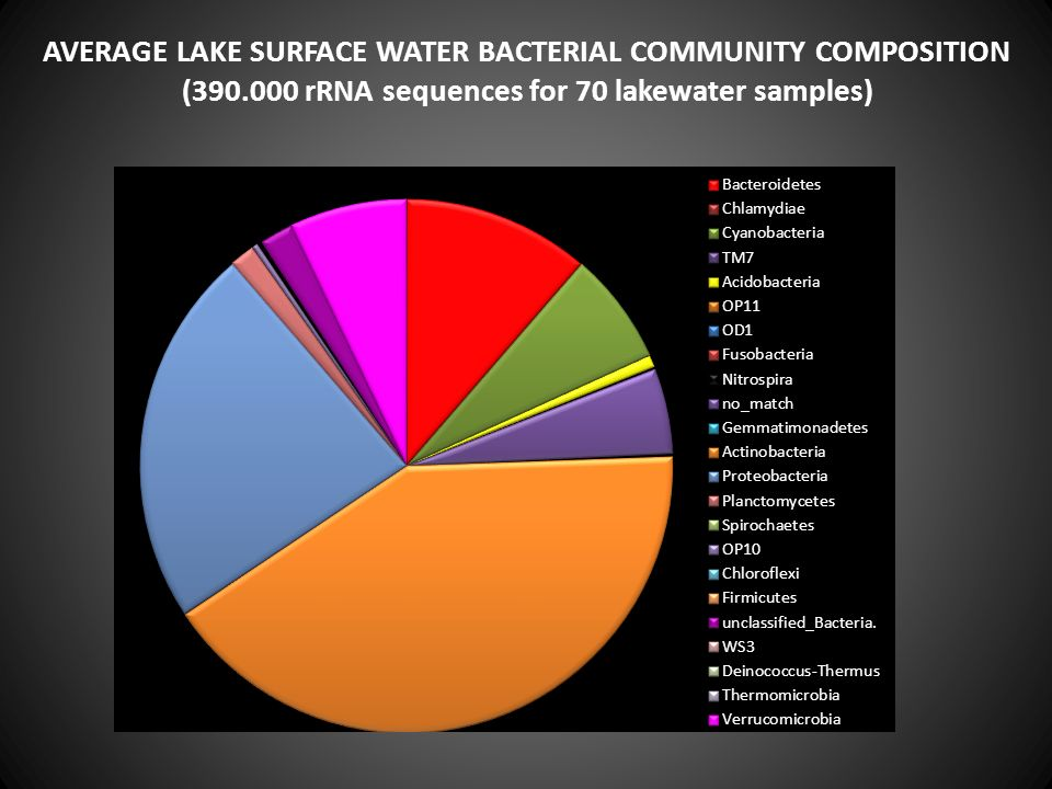 AVERAGE LAKE SURFACE WATER BACTERIAL COMMUNITY COMPOSITION (390.000 rRNA sequences for 70 lakewater samples)