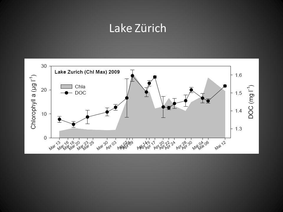 Ice Stratification Lake Erken