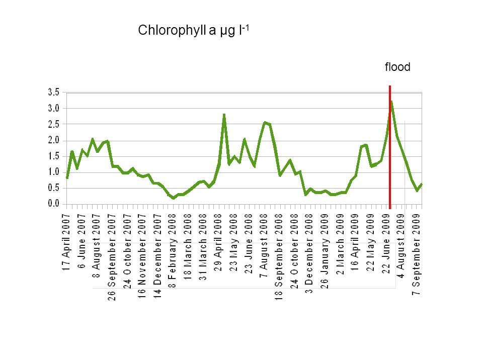 Chlorophyll a µg l -1 flood