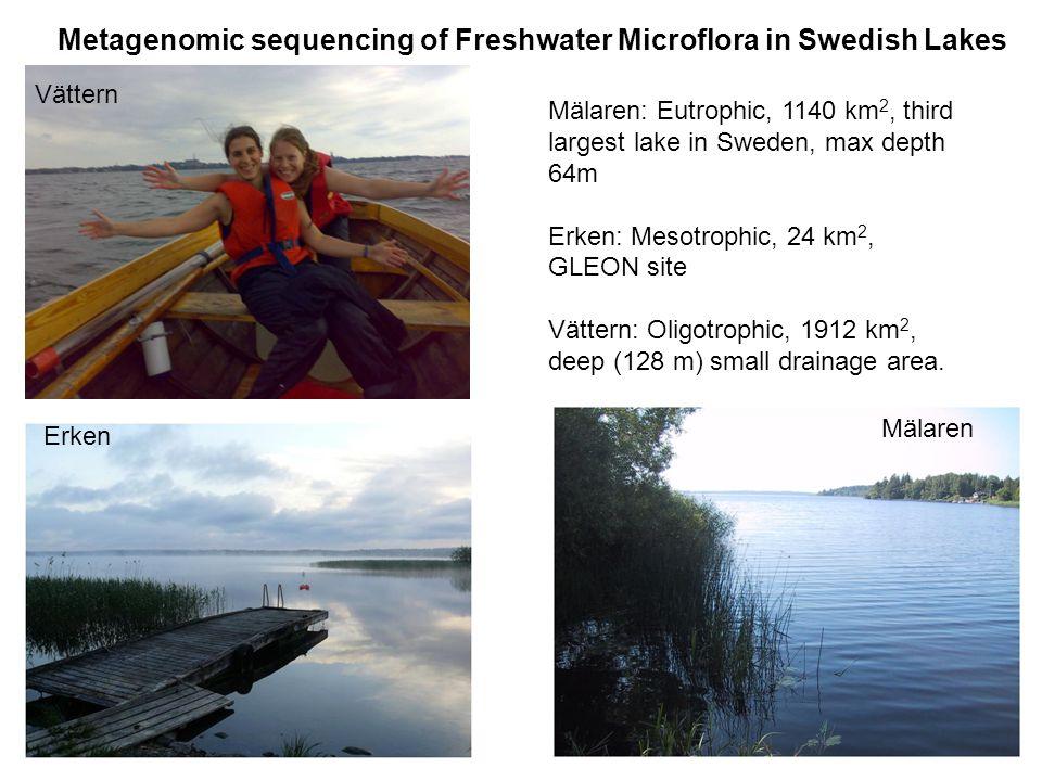 Erken Mälaren Metagenomic sequencing of Freshwater Microflora in Swedish Lakes Vättern Mälaren: Eutrophic, 1140 km 2, third largest lake in Sweden, max depth 64m Erken: Mesotrophic, 24 km 2, GLEON site Vättern: Oligotrophic, 1912 km 2, deep (128 m) small drainage area.