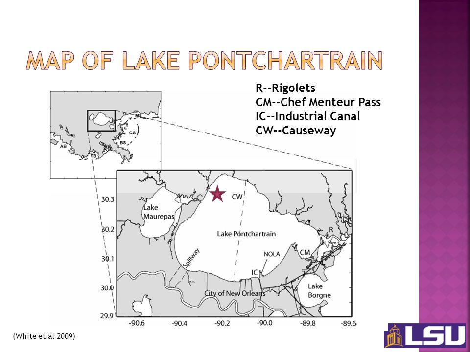 (White et al 2009) R--Rigolets CM--Chef Menteur Pass IC--Industrial Canal CW--Causeway