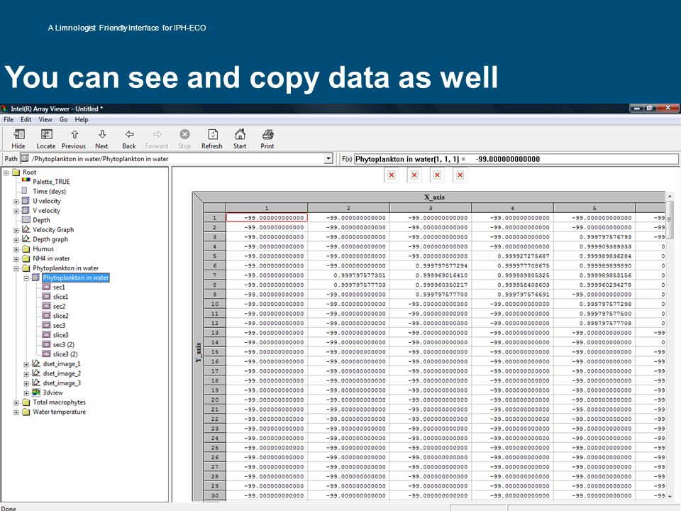 You can see and copy data as well A Limnologist Friendly Interface for IPH-ECO