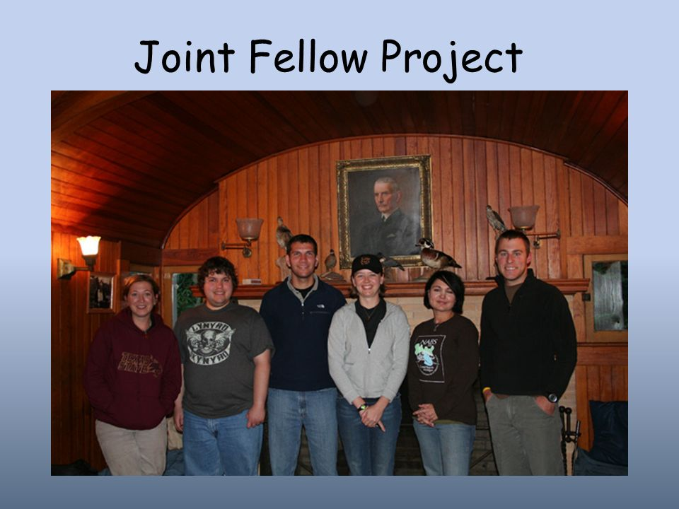 Joint Fellow Project