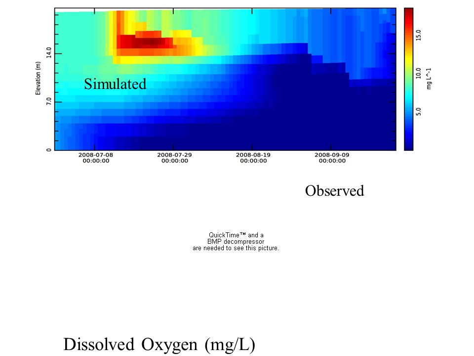 Simulated Observed Dissolved Oxygen (mg/L)