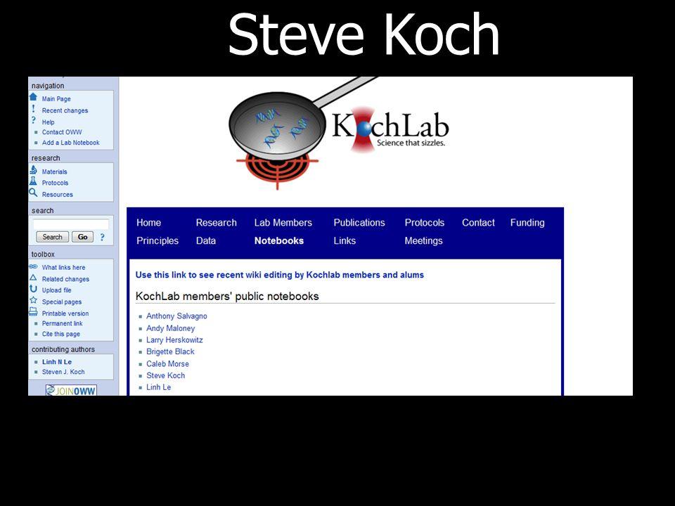 Steve Koch