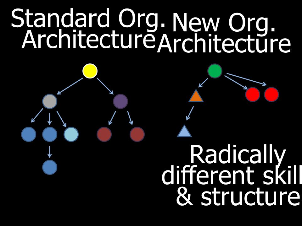 Standard Org. Architecture New Org. Architecture Radically different skills & structure