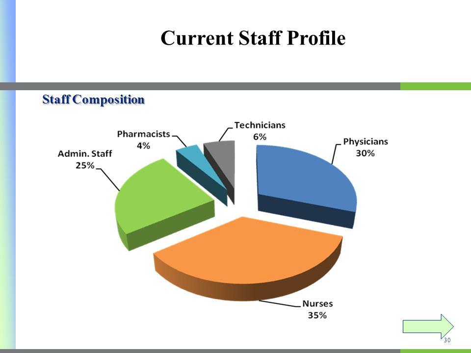 Current Staff Profile Staff Composition 30