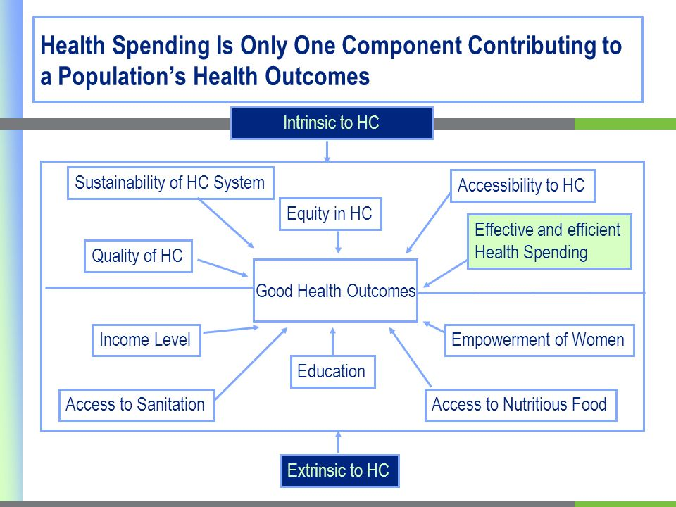 Health Spending Is Only One Component Contributing to a Populations Health Outcomes Good Health Outcomes Sustainability of HC System Quality of HC Equity in HC Accessibility to HC Effective and efficient Health Spending Income Level Access to Sanitation Education Access to Nutritious Food Empowerment of Women Extrinsic to HC Intrinsic to HC