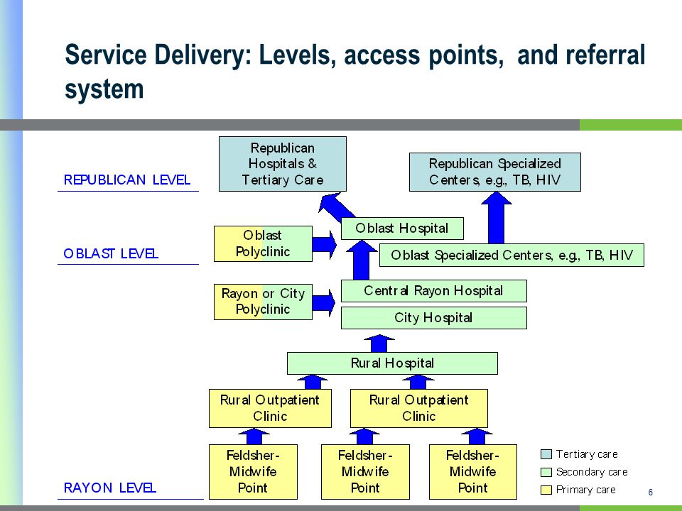 6 Service Delivery: Levels, access points, and referral system 6
