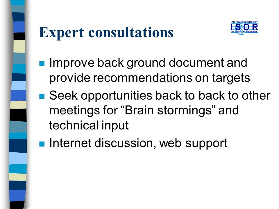 Expert consultations n Improve back ground document and provide recommendations on targets n Seek opportunities back to back to other meetings for Brain stormings and technical input n Internet discussion, web support